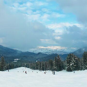 ski slope panorama by psychoshadow