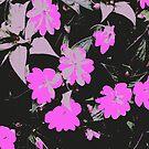 Pink Blumen von RanitasArt