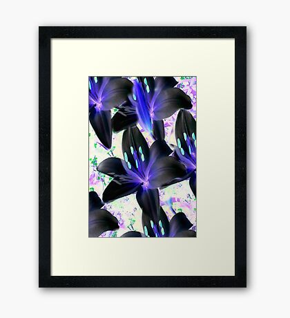 Lovely In Black...  Inverted Lilys  Framed Print