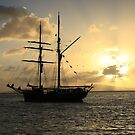 Tall-ship at sunset by David  Geerlings