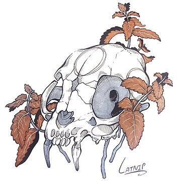 MorbidiTea - Catnip with Feline Skull by MicaelaDawn