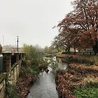 River in autumn colours by NDaae
