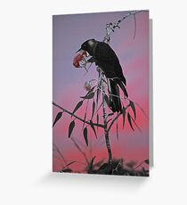 Carnaby's Cockatoo at Sunrise Greeting Card