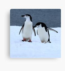 Chinstrap penguins in Antarctica, 2 Canvas Print