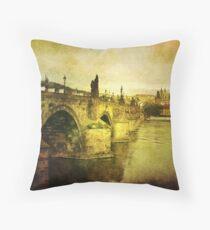 Archaic Charm Throw Pillow