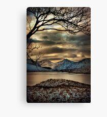 Arklet Branches Canvas Print