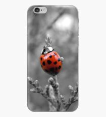 The Smile Maker - Lucky Lady Bug iPhone Case
