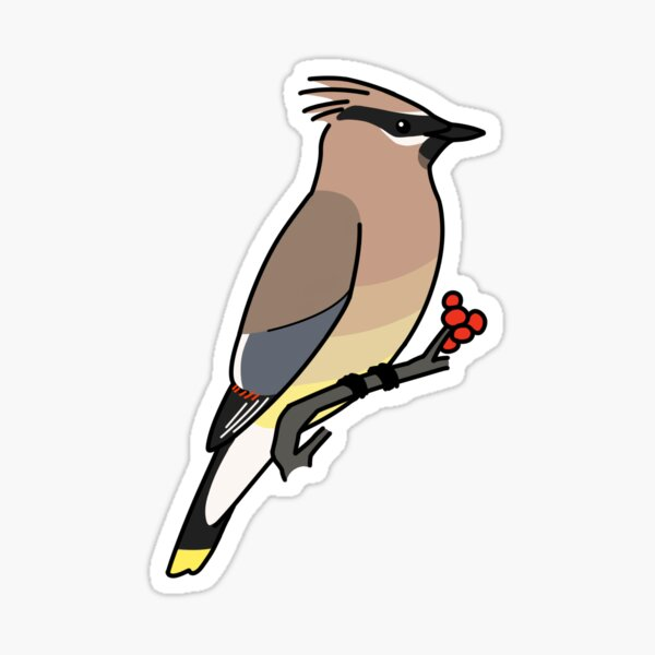 Cedar Waxwing Sticker