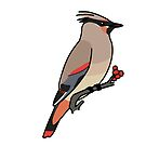 Japanese Waxwing by KeesKiwi