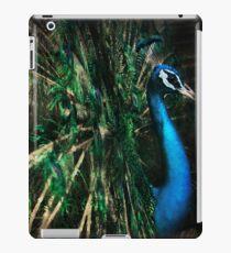 Splendour iPad Case/Skin