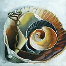 The Collection - seashell oil painting by LindaAppleArt