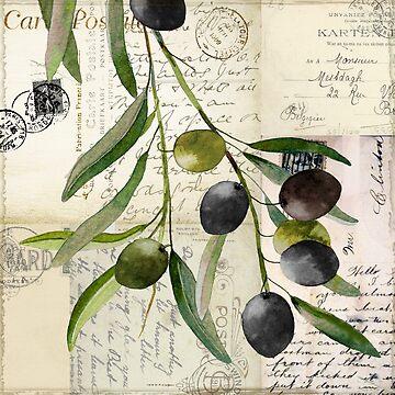 Olivia I Olive Branch Postcard by mindydidit