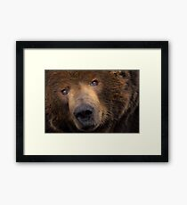 Outta My Face Lady!!! Framed Print