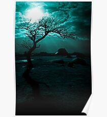 Midnight Sun Poster