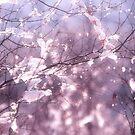 Pink Ice by Ann Garrett