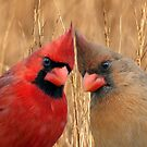 Two heads are better than one! by Bonnie T.  Barry