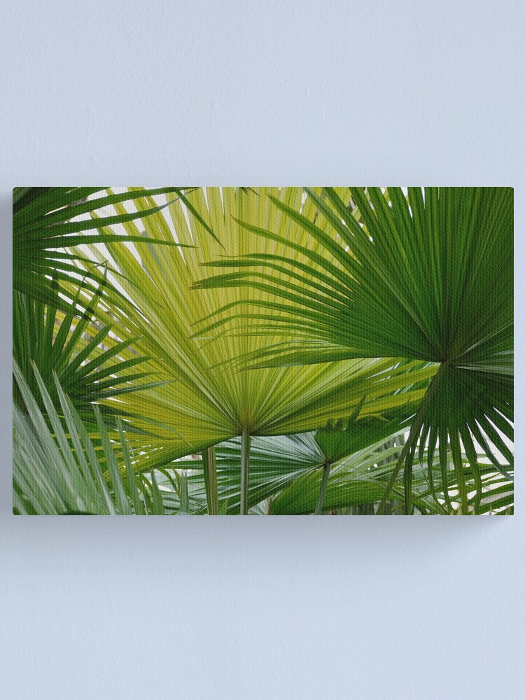 Alternate view of Fans Canvas Print