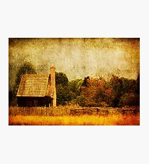 Quiet Life Photographic Print