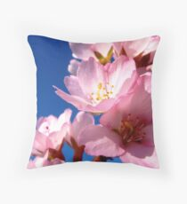 You're the Laziness of Afternoon, You're the Reason Why I Burst and Why I Bloom Throw Pillow