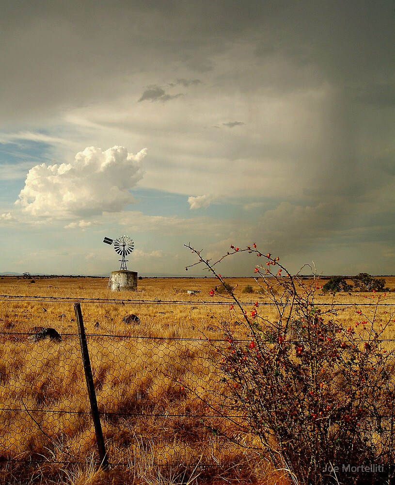 Passing Rain, Geelong District by Joe Mortelliti