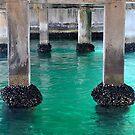 Swansea Bridge - Beauty Beneath by Bev Woodman
