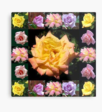 Sommer-Rosen-Collage Metallbild