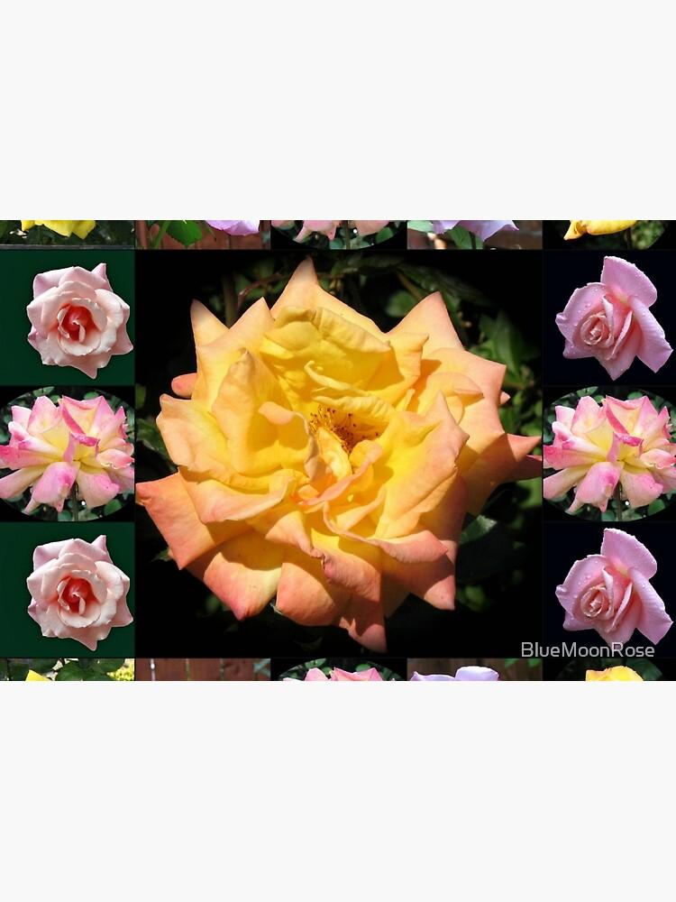Sommer-Rosen-Collage von BlueMoonRose