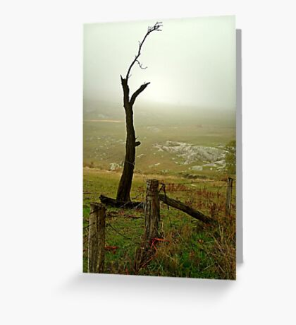 Macendon Ranges,A Damp Foggy Morning Greeting Card