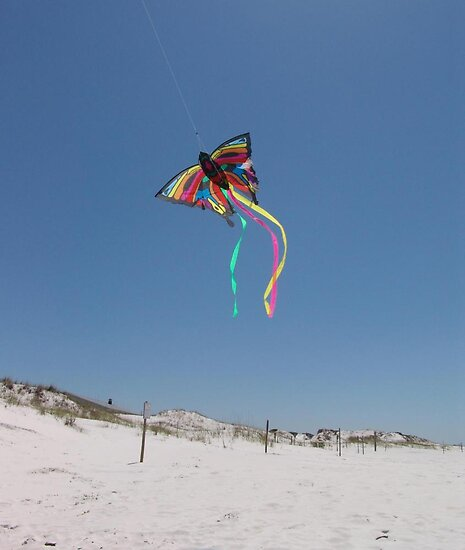 Butterfly Kite and Dunes by May Lattanzio
