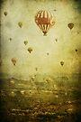 Migration by Andrew Paranavitana