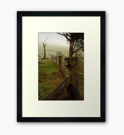 Mist and Dew Framed Print