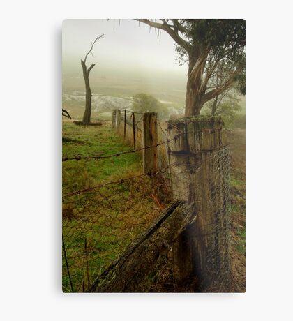 Mist and Dew Metal Print