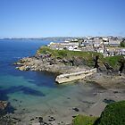 PORT ISAAC / PORTWENN (IN DOC MARTIN) CORNWALL by Richard Brookes