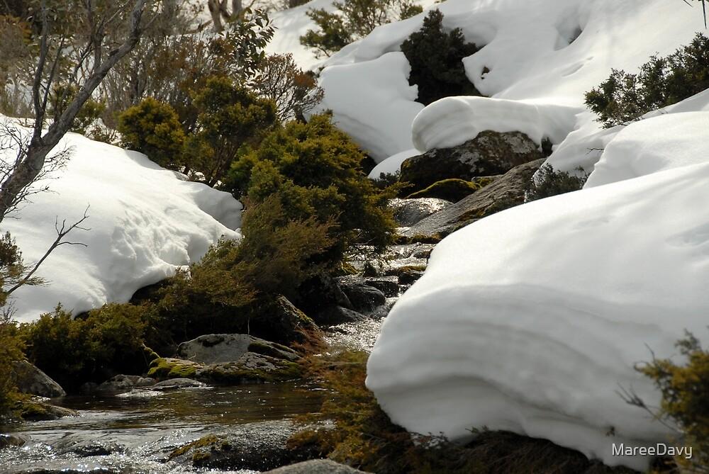 Melting Snow in Spring by MareeDavy