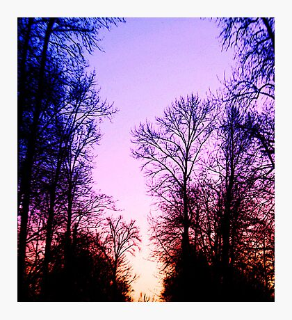 Evening Splendor Photographic Print