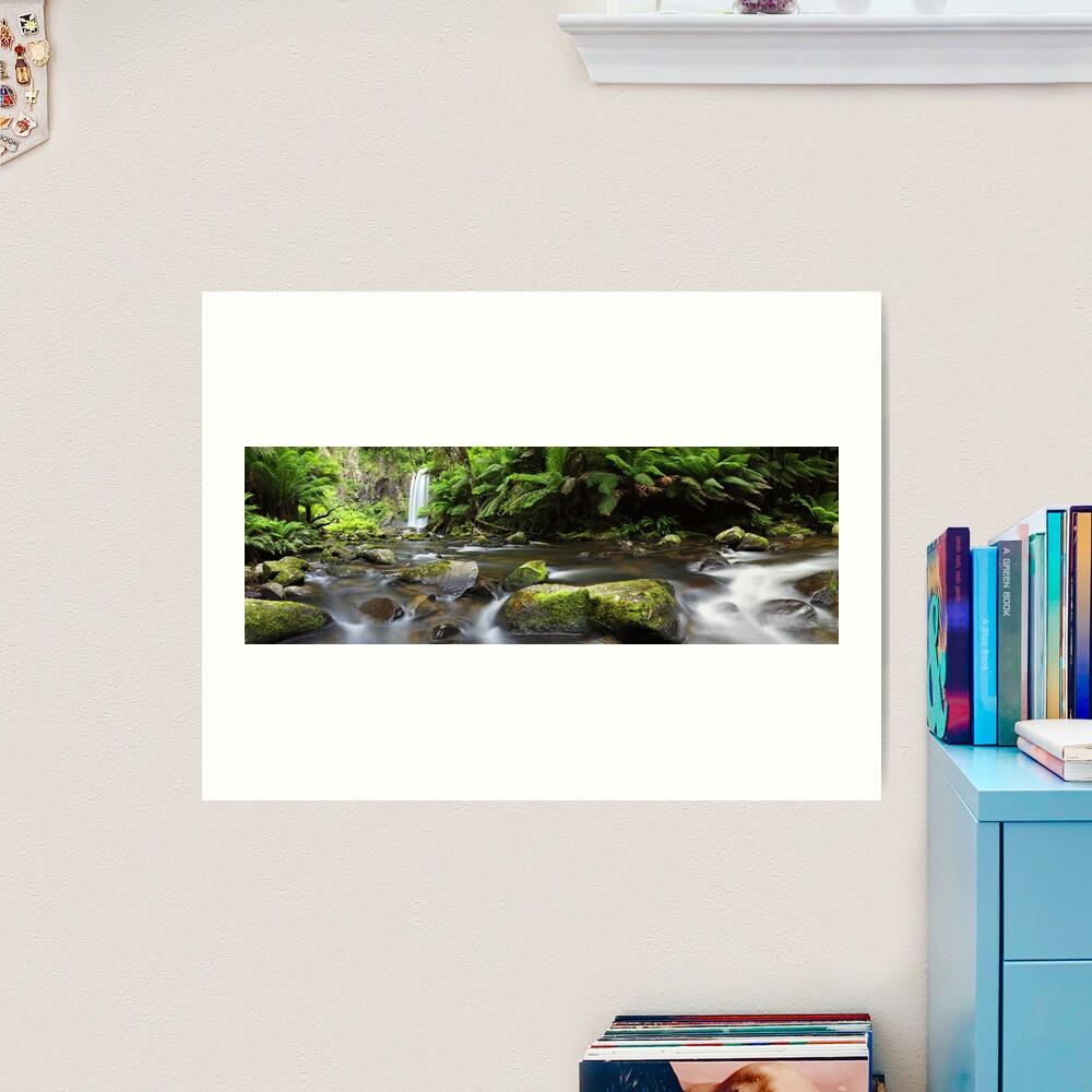 Hopetoun Falls, Otways, Great Ocean Road, Australia Art Print