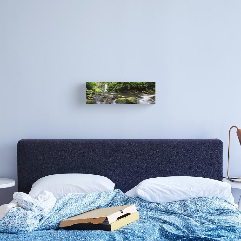 Hopetoun Falls, Otways, Great Ocean Road, Australia Canvas Print