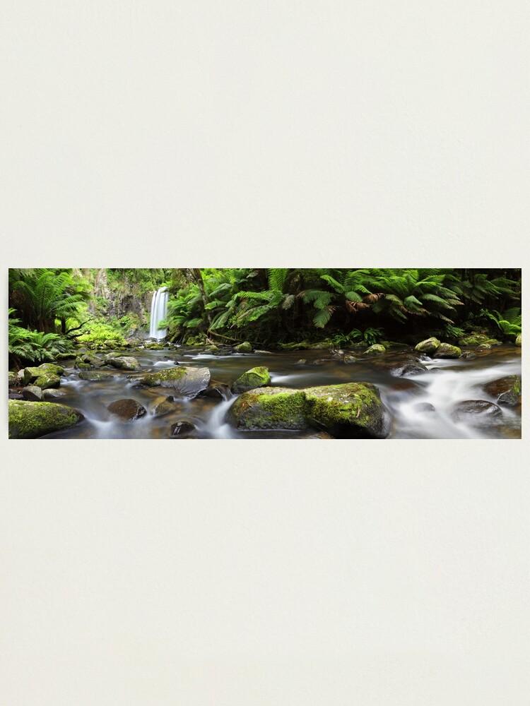 Alternate view of Hopetoun Falls, Otways, Great Ocean Road, Australia Photographic Print