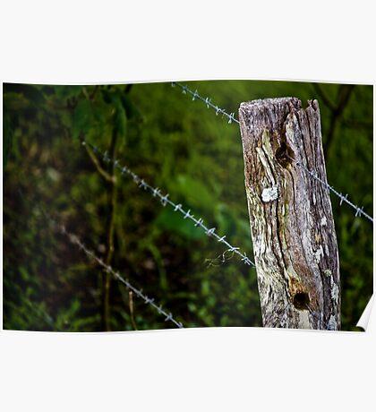 Fenceline Poster