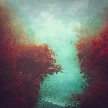Copper Trees and Teal River on a misty morning by DyrkWyst