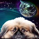 Space Planets and Pekingese Dog by Erika Kaisersot