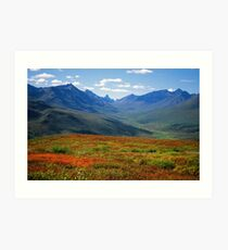 Tombstone park autumn Art Print