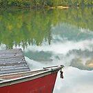 canoe on mosquito lake in Alaska by Istvan Hernadi
