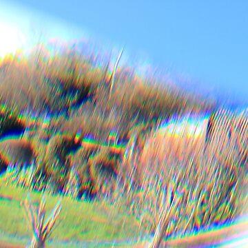 Artistic prism effect - image 2 by missmoneypenny