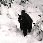 I Love Snow by Nerone