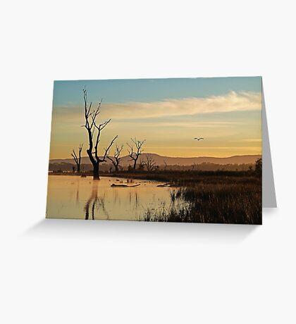 Flight, Lake Fyans, Grampians Greeting Card