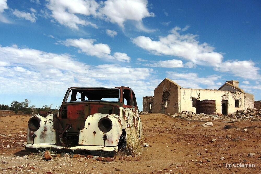 Cadelga Ruins by Tim Coleman