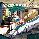Dhobi's House by Sandra Hansen