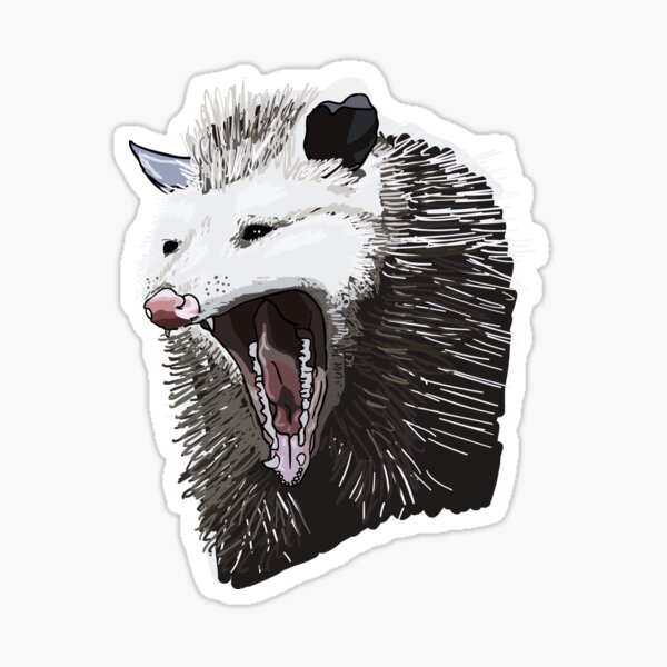 Opossum Drama Sticker
