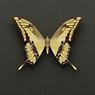 King Swallowtail Butterfly by Alyson Fennell